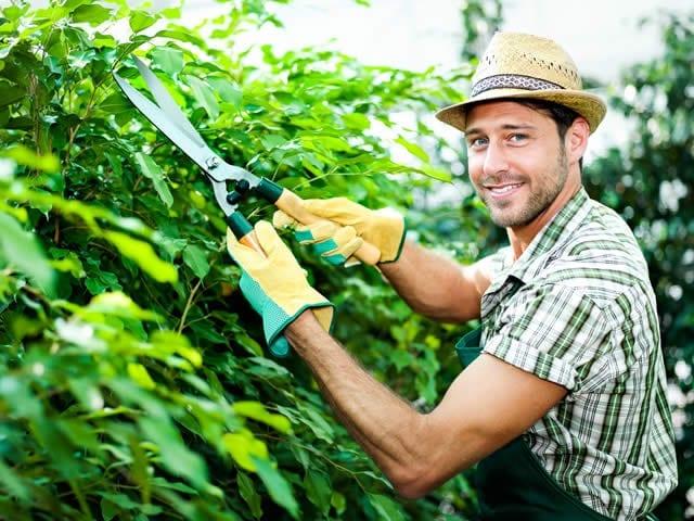 Ook het onderhoud kunt u uitbesteden! | offerte tuinaanleg