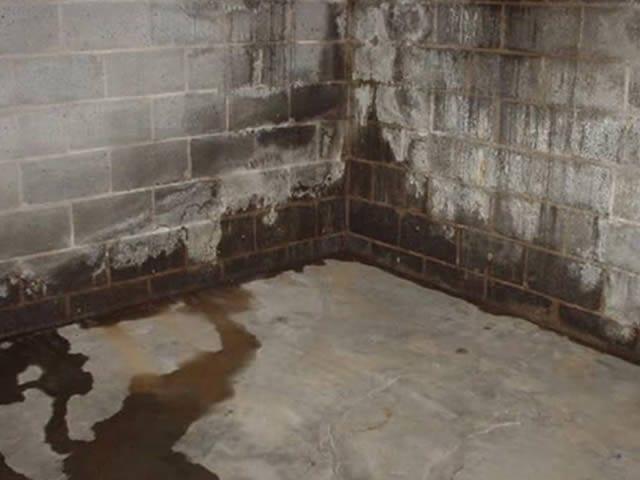 Wateroverlast of optrekkend vocht in uw kelder zorgt ook voor een hogere energierekening